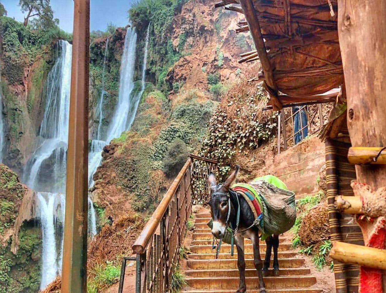 ouzoud waterfalls, ouzoud morocco, ouzoud vodopadi, vodopadi maroko