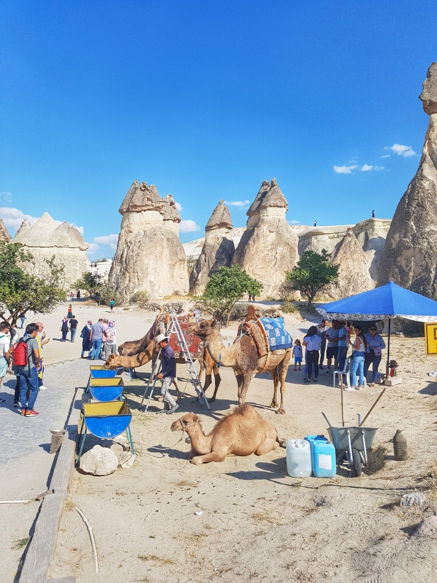 kamile u dolini monaha